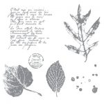 FRENCH FOLIAGE - CLEAR-MOUNT STAMP large