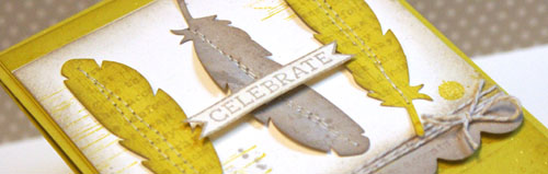 Feathers Case Study By Teneale Williams #stampinup