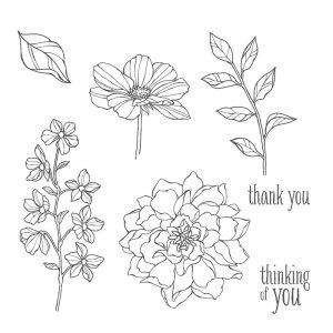 Peaceful Petals Stampin' Up! Teneale Williams Australia Cardmaking Watercolouring Blender Pen