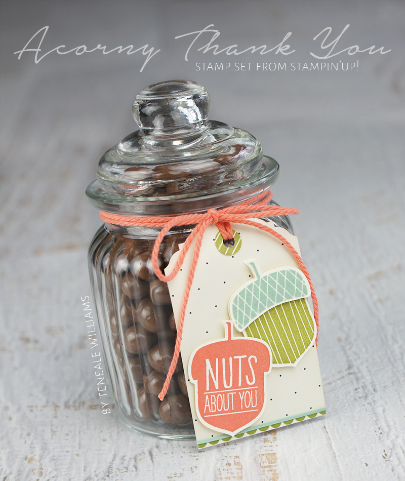 By Teneale Williams | Stampin Up Artisan Design Team Blog Hop October 2015 | Acorny Thank You Stamp Set featured on hostess gift