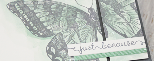 By Teneale Williams | All Stampin' Up! Materials | Swallowtail Background Stamp and A Dozen Thoughts stamp set