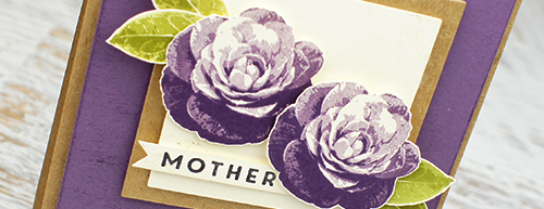By Teneale Williams   Stampin'Up! Occasions Catalogue   New stamp set called, Picture Perfect, Timeless Textures and First Slights