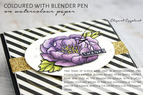 Two tones of purple were used in watercolouring this flower from Birthday Blooms to add extra depth. Perfect Plum was used as the foundation colour with a little Elegant Eggplant added to tone the highlights of the top half of the flower, which is the inside petals as the flower opens.