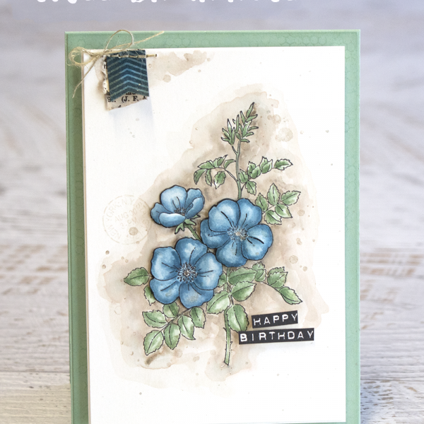 Card by Teneale Williams | Stampin'Up! Sweetbriar Rose Retiring May 31st 2016 | Watercolouring on Shimmer cardstock