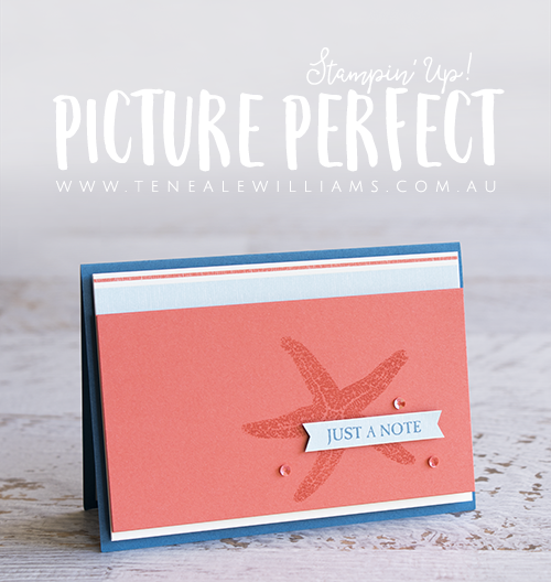 By Teneale Williams, Stampin' Up! Australia | Picture Perfect Stamp Set | Clean and Simple Coastal Theme Male card