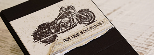 By Teneale Williams | Stampin' Up! One Wild Ride