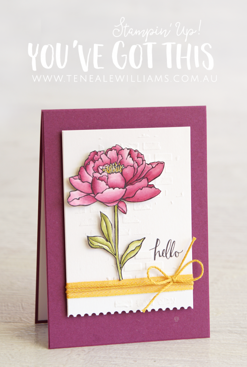 By Teneale Williams | Stampin' Up! Demonstrator Australia | You're Got This Stamp Set