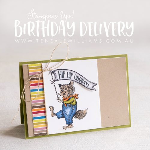 Stampin' Up! Teneale Williams | Stampin' Blends Colour Lifting Technique