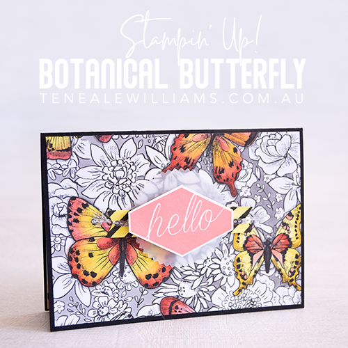 Teneale Williams | Botanical Butterfly Stampin' Up!
