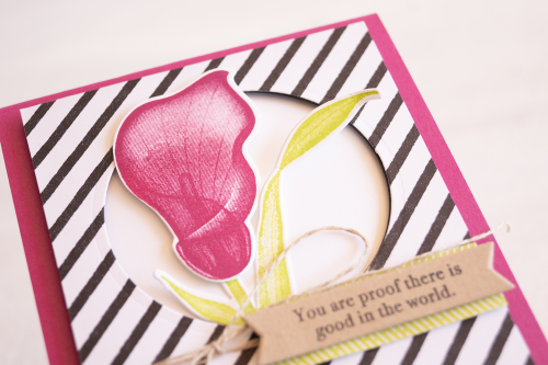 Teneale Williams | Lasting Lily Stampin Up!