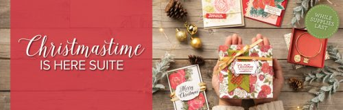 The Christmas Rose Bundle includes the Christmas Rose Stamp Set and the coordinating Roses Dies. Buy the bundle and save 10%!