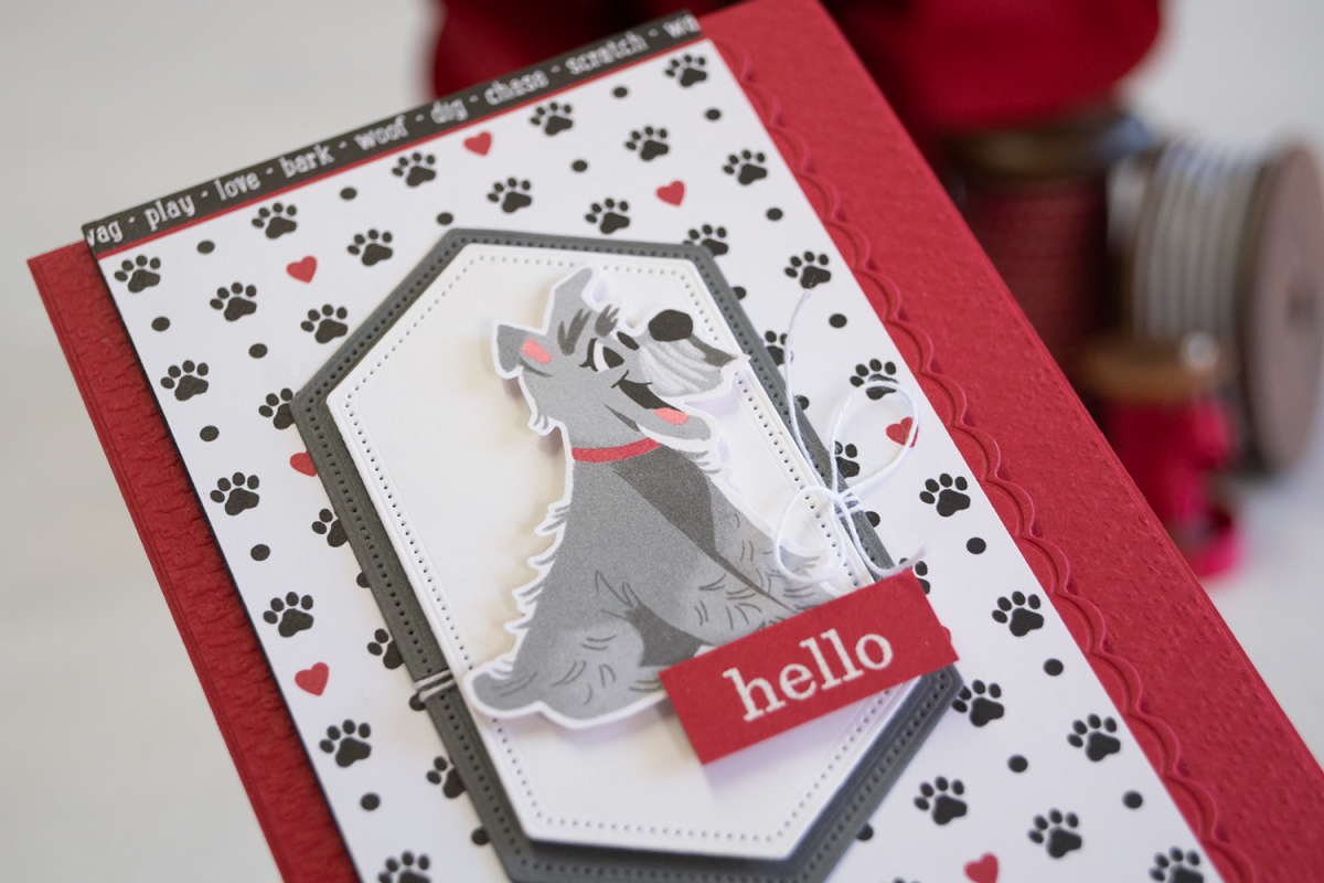 By Teneale Williams Playful Pets Stampin Up card