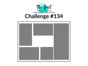 The Spot Sketch Challenge