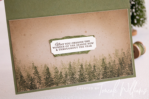 By Teneale Williams In the pines stamp set from Stampin up