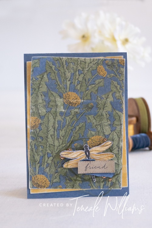 By Teneale Williams Dandy Garden DSP and Dragonfly Garden stamps from stampin up