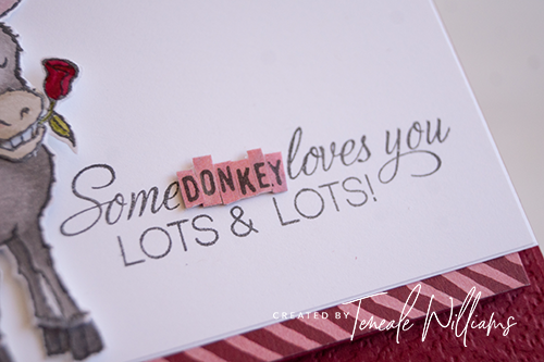 By Teneale Williams Stampin Up Darling Donkeys with Parcels and petals greeting from stampin up