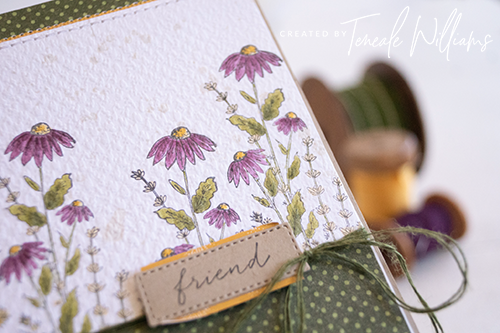 Teneale Williams | Stampin Up! Dragonfly Garden Stamp Set