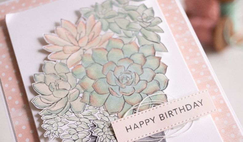 By-Teneale-Williams-simply-succulents-cling-stamp-set-and-potted-succulents-dies-stampin-blends-techinque